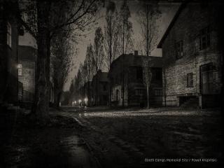 5,000 Polish political prisoners from Auschwitz