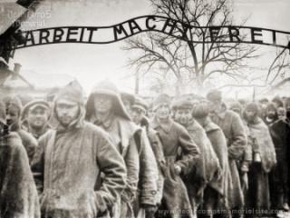 Soviet prisoners in KL Auschwitz